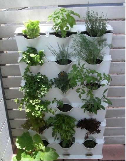 Macetero jardin vertical y huerto urbano set de 3 unidades - Macetas para jardin vertical ...